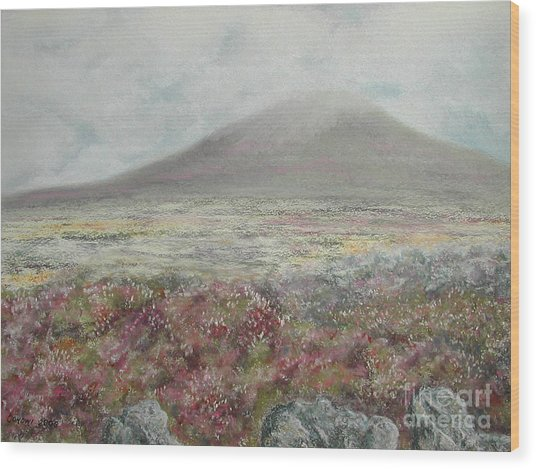 Snaefell Heather Wood Print