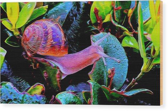 Snail 12 Wood Print