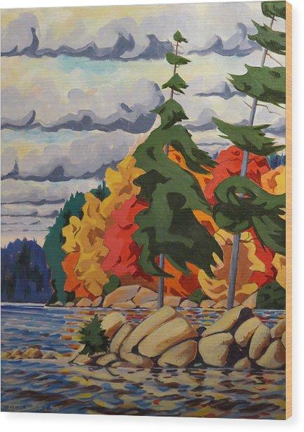 Snake Island In Fall-close Wood Print