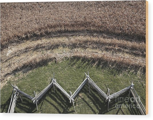 Snake-rail Fence And Cornfield Wood Print