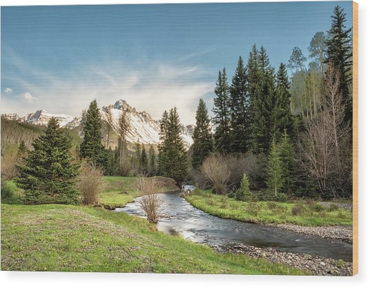 Sneffels And Spring Stream Wood Print