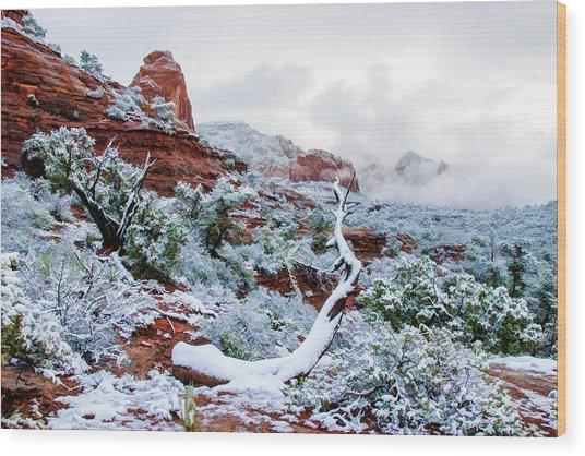 Snow 05-024 Wood Print