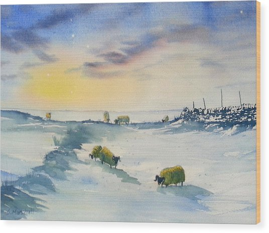 Snow And Sheep On The Moors Wood Print