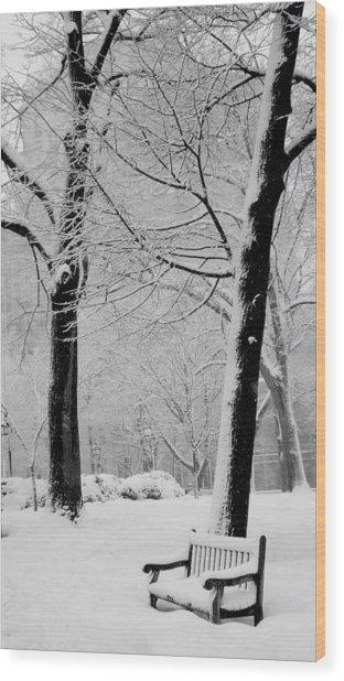 Snow Bench Wood Print