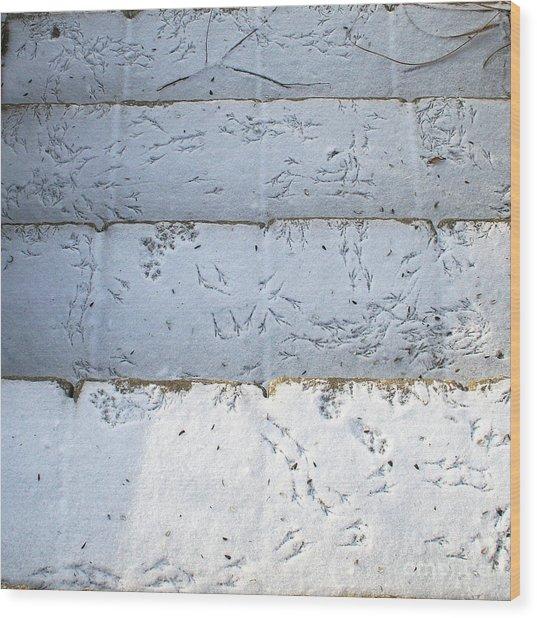 Snow Bird Tracks Wood Print