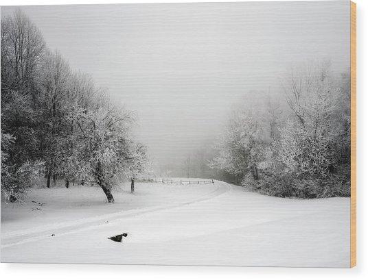 Snow Bound Wood Print