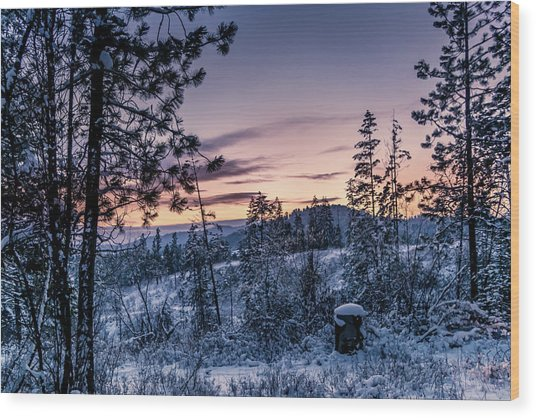 Snow Coved Trees And Sunset Wood Print