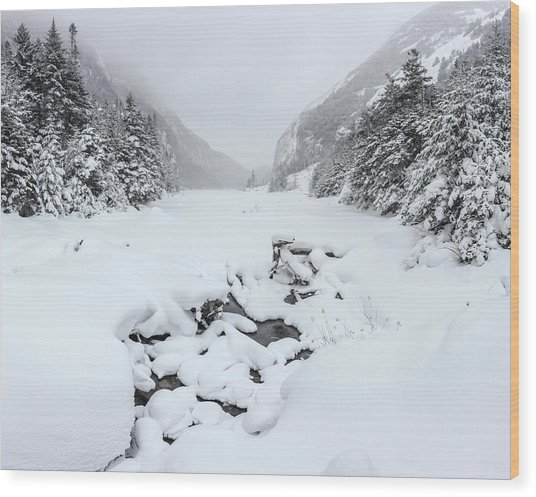 Snow Covered Lake Wood Print