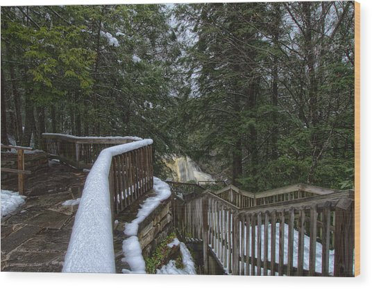 Snow Covered Path Wood Print