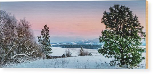 Snow Covered Valley Wood Print