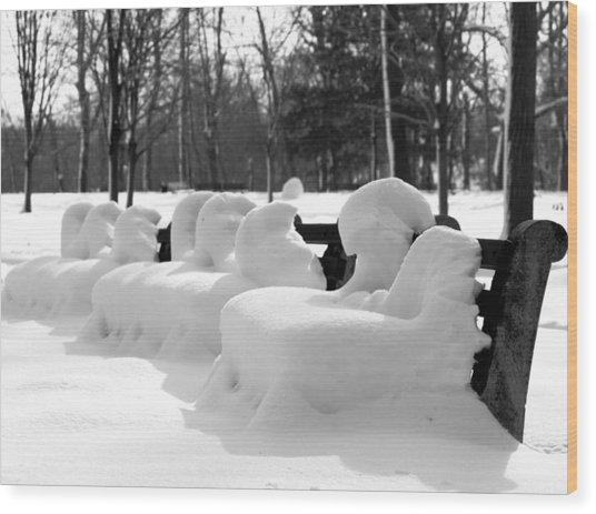 Snow Cushions Wood Print by Freda Sbordoni