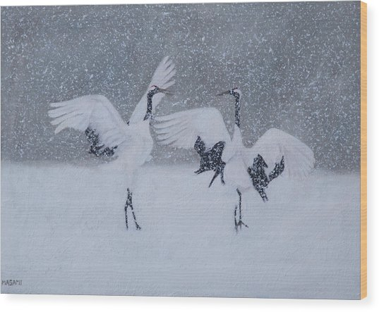 Snow Dancers Wood Print