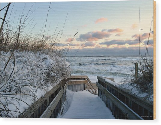 Snow Day At The Beach Wood Print