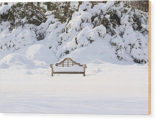 Snow Dwarfed Bench Wood Print