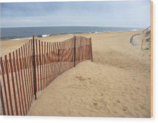 Snow Fence - Plum Island Wood Print