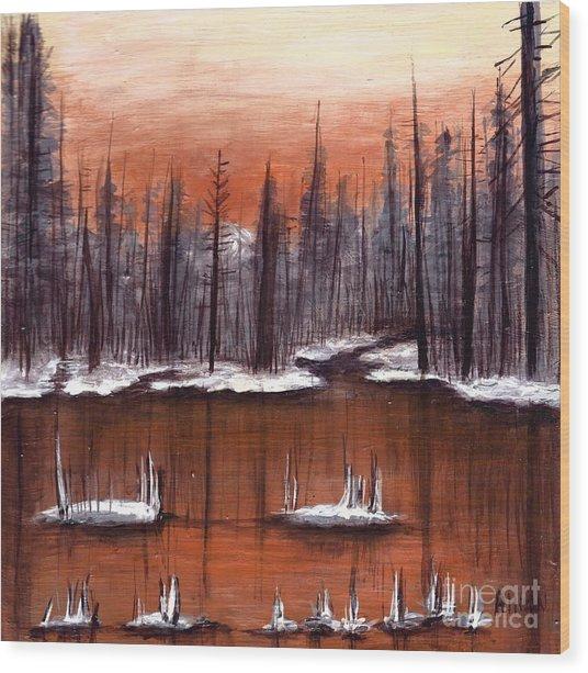 Snow Glow  Wood Print
