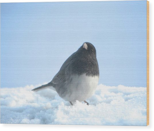 Snow Hopping #2 Wood Print