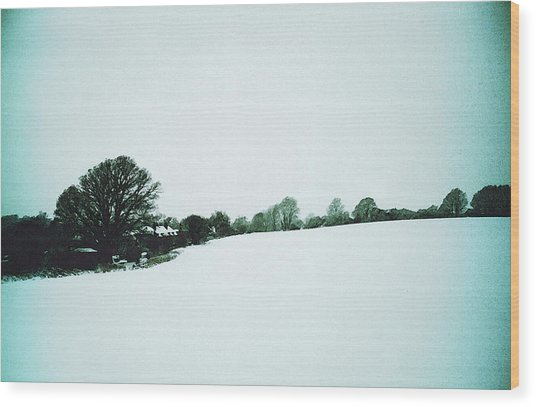 Snow In Sussex Wood Print