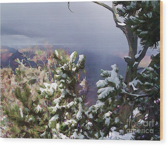 Snow In The Canyon Wood Print