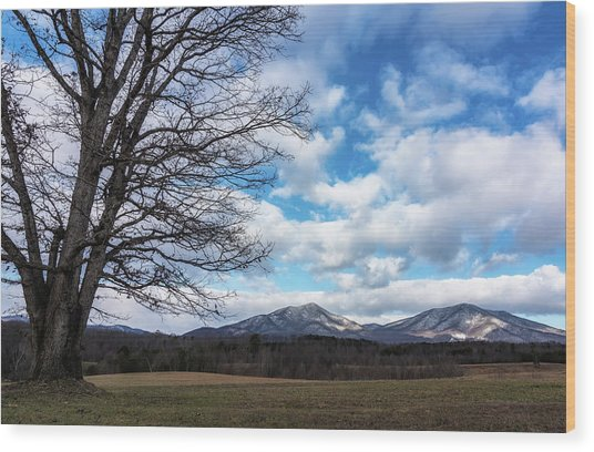 Snow In The High Mountains Wood Print