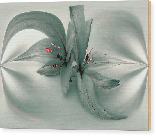 Snow Lilies Wood Print