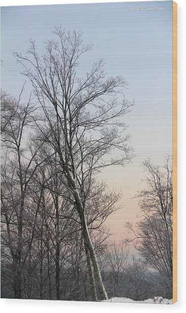 Snow Scene Wood Print by Carolyn Postelwait