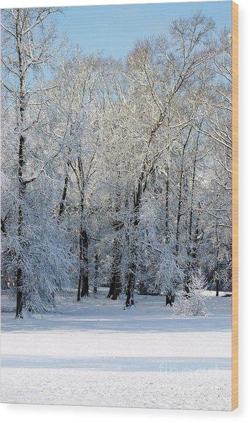 Snow Scene One Wood Print