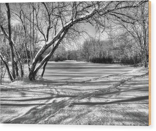 Snow Scripting Wood Print
