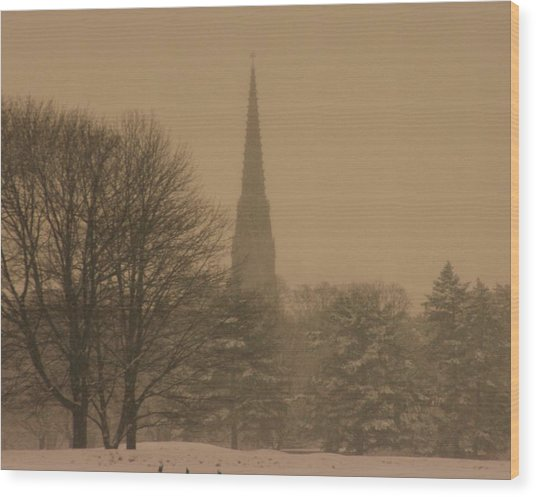 Snow Storm Wood Print by Dennis Curry