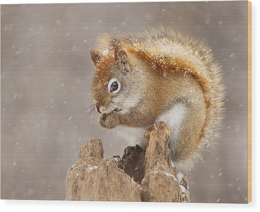 Snow Storm Wood Print