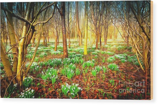 Snowdrops In The Woods Wood Print