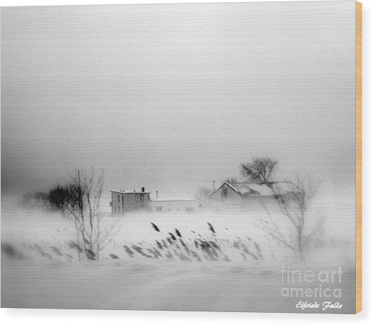 Snowed - In Wood Print