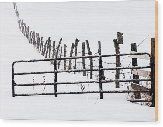 Snowfield Entry - Wood Print