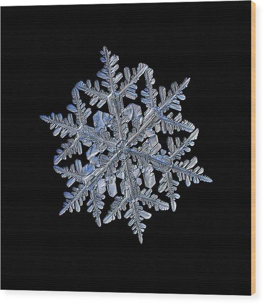 Snowflake Macro Photo - 13 February 2017 - 3 Black Wood Print