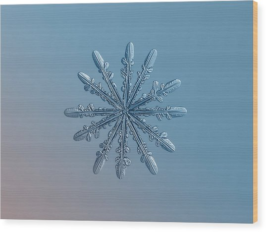 Snowflake Photo - Chrome Wood Print