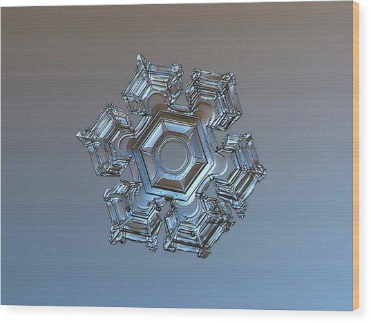 Snowflake Photo - Cold Metal Wood Print