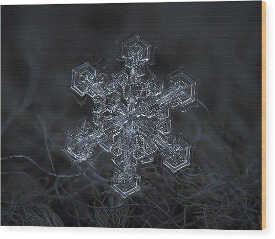 Snowflake Photo - Complicated Thing Wood Print