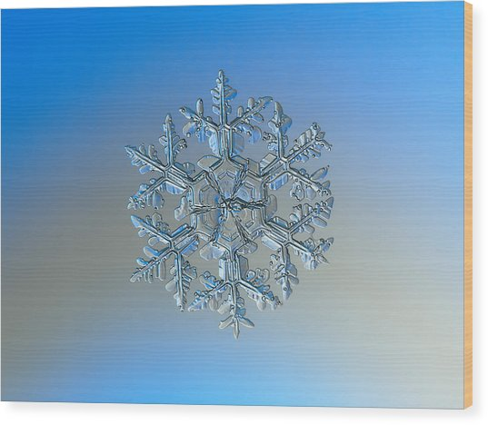 Snowflake Photo - Gardener's Dream Wood Print