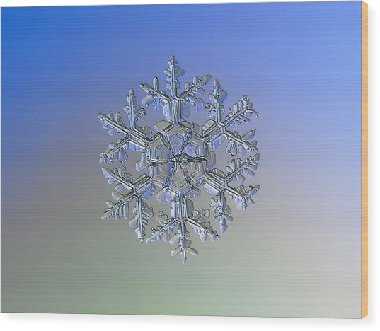 Snowflake Photo - Gardener's Dream Alternate Wood Print