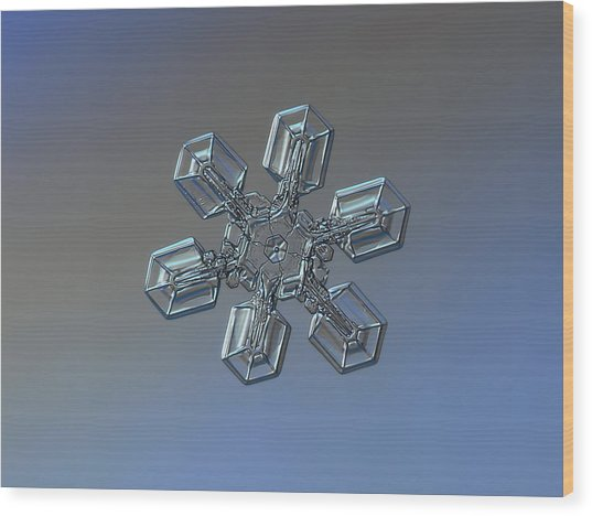 Snowflake Photo - High Voltage Wood Print