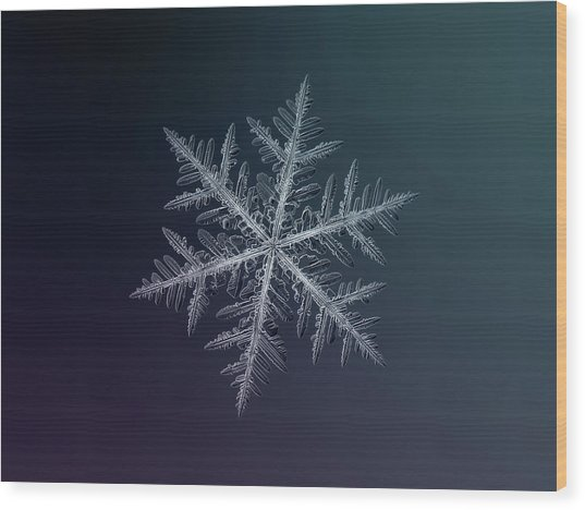 Snowflake Photo - Neon Wood Print