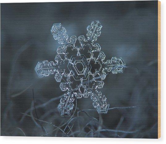 Snowflake Photo - Slight Asymmetry Wood Print