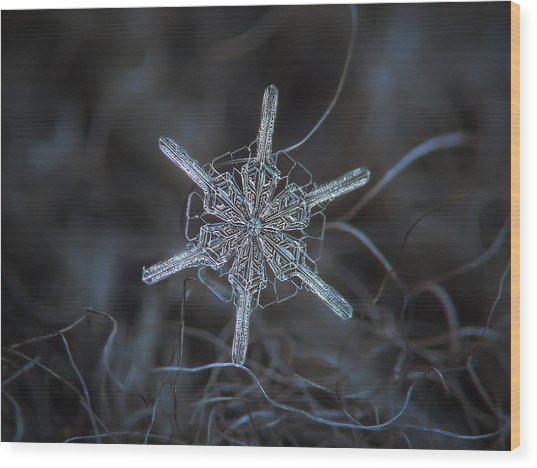 Wood Print featuring the photograph Snowflake Photo - Steering Wheel by Alexey Kljatov