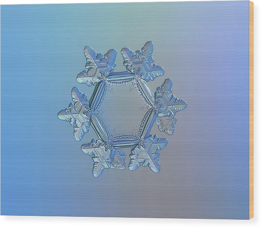 Snowflake Photo - Sunflower Wood Print