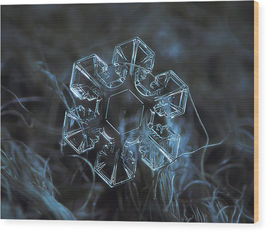 Snowflake Photo - The Core Wood Print
