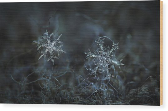 Snowflake Photo - When Winters Meets - 2 Wood Print