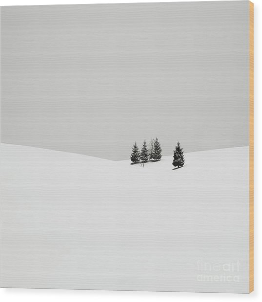 Snowscapes   Almost There Wood Print