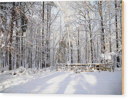 Snowy Chicken Coop Wood Print