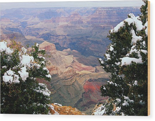 Snowy Dropoff - Grand Canyon Wood Print