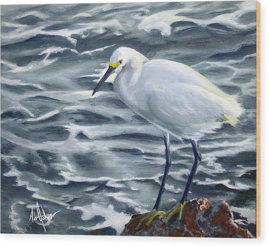 Snowy Egret On Jetty Rock Wood Print